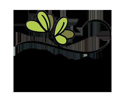 Belvedere appartamento logo